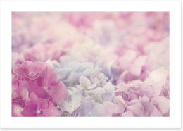Pink hydrangea haze Art Print 58642487