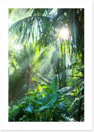 Asia Art Print 58897133
