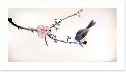 Pink blossom bird Art Print 59286655