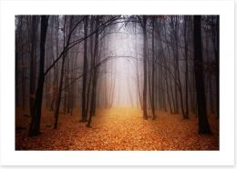 Golden foggy forest Art Print 60105521