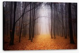 Golden foggy forest Stretched Canvas 60105521