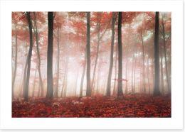 Red leaf forest Art Print 61369506
