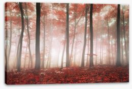 Red leaf forest Stretched Canvas 61369506
