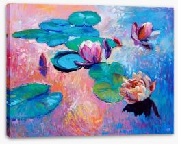 Water lilies Stretched Canvas 61699665