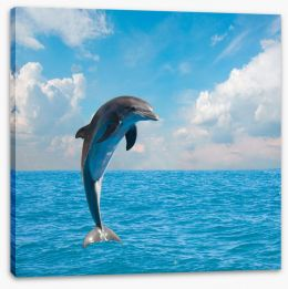 Jumping dolphin Stretched Canvas 61990213