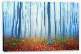 Autumn fairytale forest