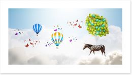 Zebra and balloons
