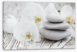 Purity Stretched Canvas 62579389