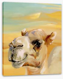 Animals Stretched Canvas 62964105