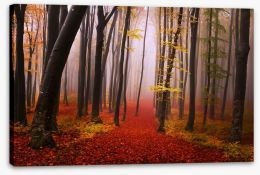 Autumn in the fairytale forest