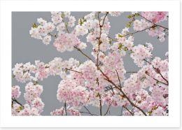 Flowers Art Print 63588637