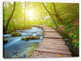 Boardwalk through the forest Stretched Canvas 63778873
