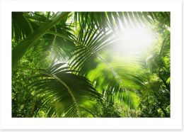 Lush green rainforest Art Print 63974443