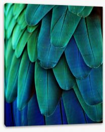 Macaw feathers Stretched Canvas 64649675