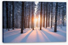 Snowy forest sunrise Stretched Canvas 64819783