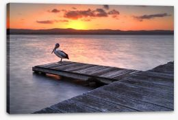Sunset at Long Jetty Stretched Canvas 64933614