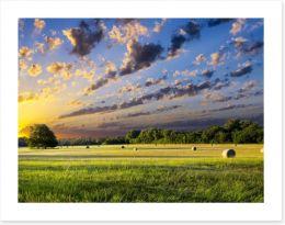 Hay bales at sunrise Art Print 67486146