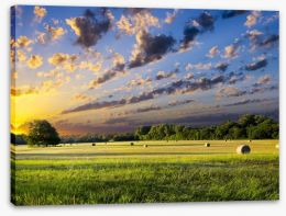 Hay bales at sunrise Stretched Canvas 67486146