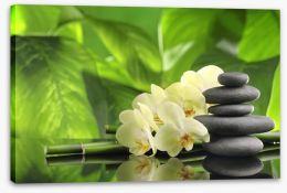 Green spa zen Stretched Canvas 68021335