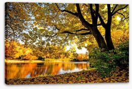 Autumn park glow