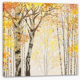 Deep in the autumn birch grove