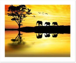 Elephant safari Art Print 70048909