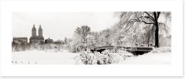 Central Park winter Art Print 70674662