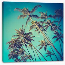 Retro palms Stretched Canvas 71273118