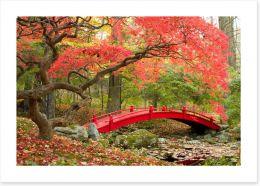 Red bridge in Autumn Art Print 72372777