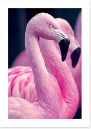 Birds Art Print 73127657