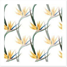 Birds of paradise Art Print 73937072