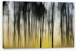 Dawn in the forest Stretched Canvas 75216126