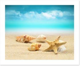Starfish and seashells Art Print 80083100