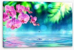 Zen garden droplet Stretched Canvas 80484914