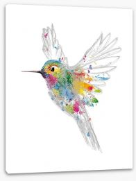 Rainbow honey-eater Stretched Canvas 82070042