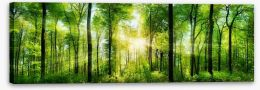Heart of the forest Stretched Canvas 82972458