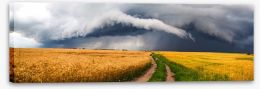 Meadows Stretched Canvas 87230895
