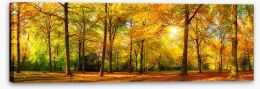 Autumn Stretched Canvas 89529230
