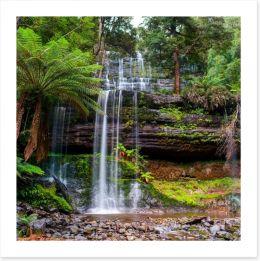 Russell Falls Creek, Tasmania