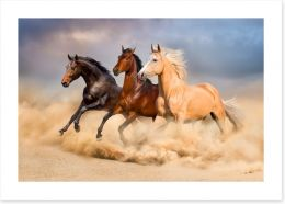 Animals Art Print 90824183