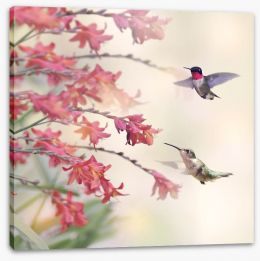 Hummingbirds and wildflowers Stretched Canvas 96388523