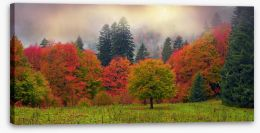 Autumn Stretched Canvas 98805038