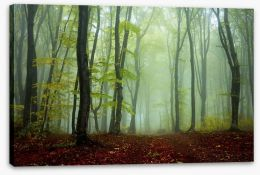 Deep in the mystic woods