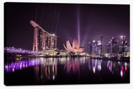 The Singapore flower Stretched Canvas CS0011