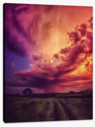 The orange storm Stretched Canvas FB0005