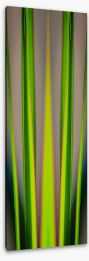 Dracaena leaves Stretched Canvas TH0003