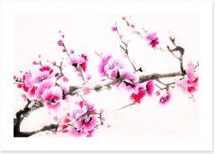 Pink blossom branch Art Print 109571201