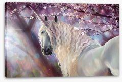 Unicorn in the blossom