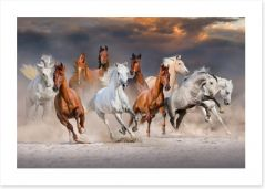 Sunset gallop Art Print 118236051