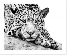Black and White Art Print 121577649